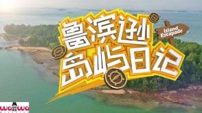 Island Escapade